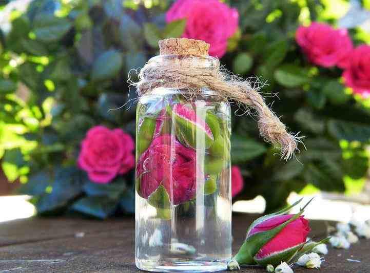 Korzyści kosmetyczne wody różanej. woda z róż, zalety wody różanej, pielęgnacja cery, pielegnacja każdego typu skóry, róże, tonik z wod różanej, maseczki wody różanej, domowe spa, pielęgnacja buzi, jak stosowć wodę różaną, łuszczyca, woda różana na łuszczycę, woda różana na egzemę, egzema, trądzik woda różana na trądzik, zmarszczki, redukcja zmarszczek, promieniowanie UV, zdrowy styl joanny